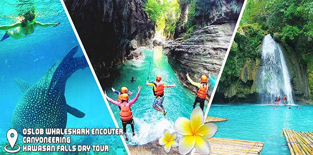 Cebu Oslob Whaleshark Encounter + Canyoneering + Kawasan Falls Day Tour Bohol Cebu Tours HRI Gal 2