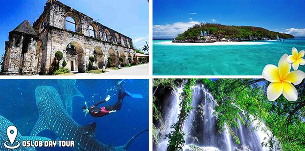 Cebu-Whale-Shark-Encounter-Tumalog-Falls-Day-Tour-_aecd5079f3052da160d03daaea106571